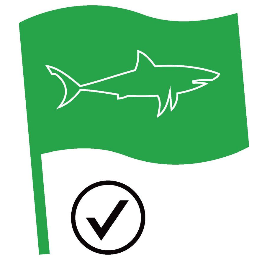Shark Spotters Green Flag