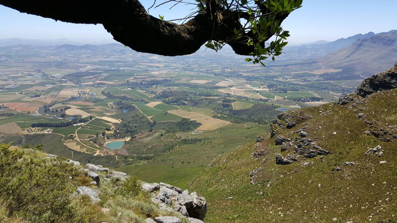 View towards Stellenbosch