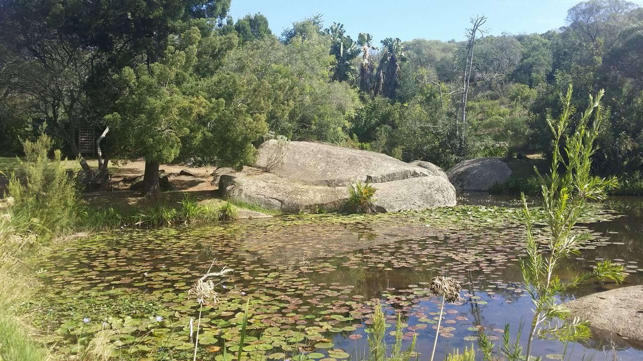 Paarl Rock Hike