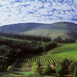 Elgin Valley